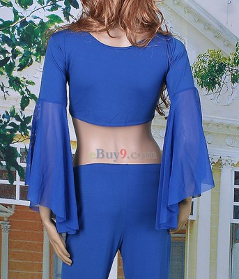 Belly Dance Yoga Trousers Costume Blue Gauze Fishtail -As picture
