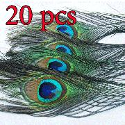 20 natural peacock tail feathers,about 26-30cm KQ20w-Multi Color
