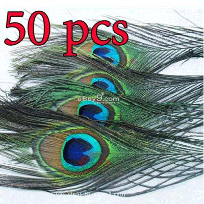 50 natural peacock tail feathers,about 26-30cm A+ KQ50w-Multi Color
