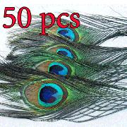 /50-natural-peacock-tail-feathersabout-2630cm-a-kq50w-p-210.html
